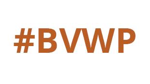BVWP: Barley zweifelt an Realisierbarkeit des Moselaufstiegs